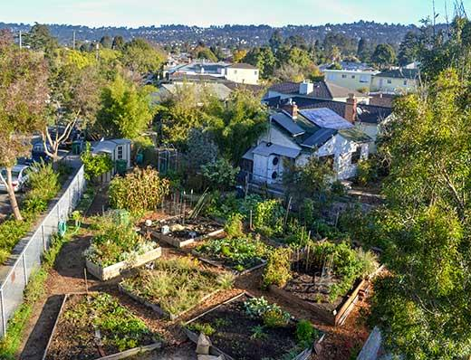 Berkeley EcoHouse